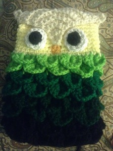 Owl  Mini Ipad Case